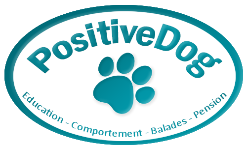 logo POSITIVE DOG